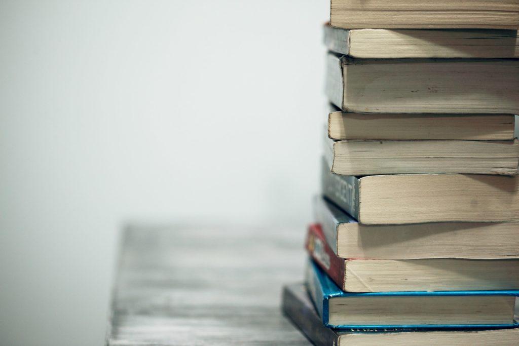 Bøger og artikler af Tine Basse Fisker